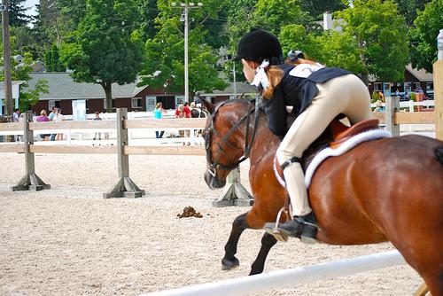 Skoki przez przeszkody pony